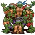 red tortise